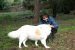 La foto mostra Francesco Trento in campagna, mentre accarezza un grosso cane